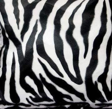 Wild Zebra Animal Print Upholstery Fabric