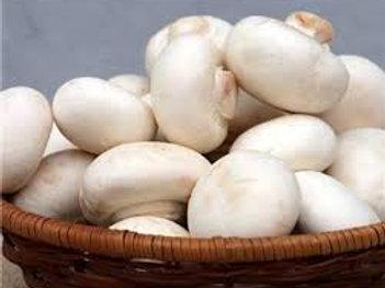 CA009 口蘑菇 150g