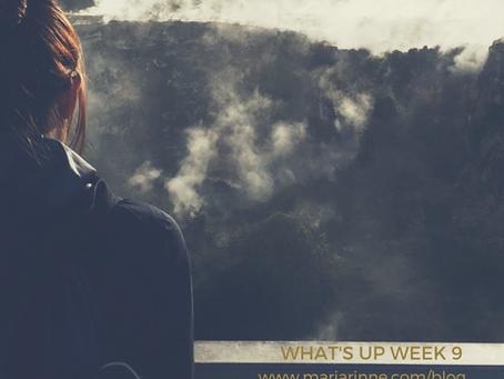 Wha't up week 9