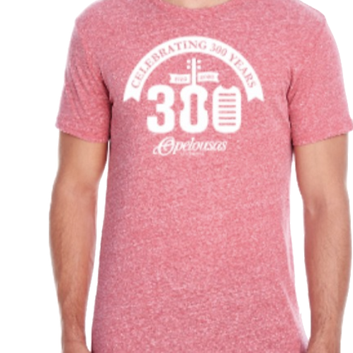 Celebrate 300 T-shirt (Red)