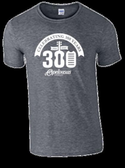 Celebrate 300 T-shirt (Grey)