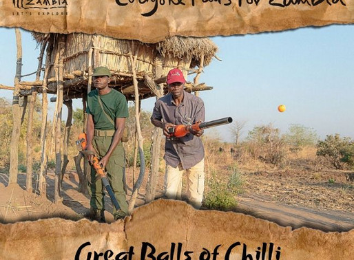 Zambia's 'Great Balls of Chilli'