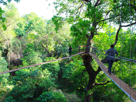 REACH NEW HEIGHTS IN TANZANIA WITH TAKIMS HOLIDAYS