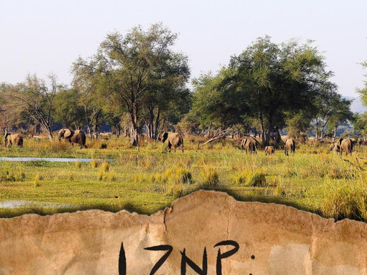 Zambia boasts world's first carbon neutral national park