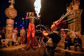Festivals SWZ Bushfire 9 (BL).jpg