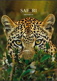 Safari 33