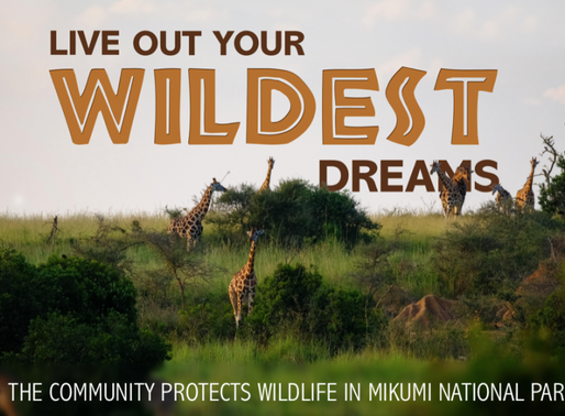 Community Protects Wildlife in Mikumi NP, Tanzania