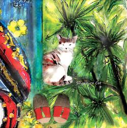 Coaster 2- Singapura Cat
