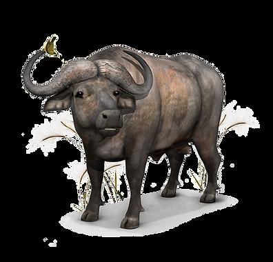 printable buffalo by jtmuses060620.png