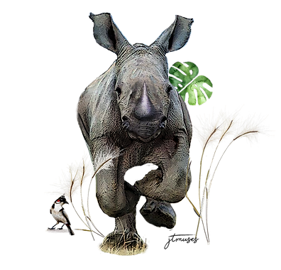 printable_rhino_by_jtmuses_120421-l.png