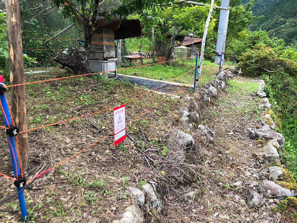 クマ対策用の電気柵の施工写真です