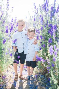 Confetti flower fields photo shoot