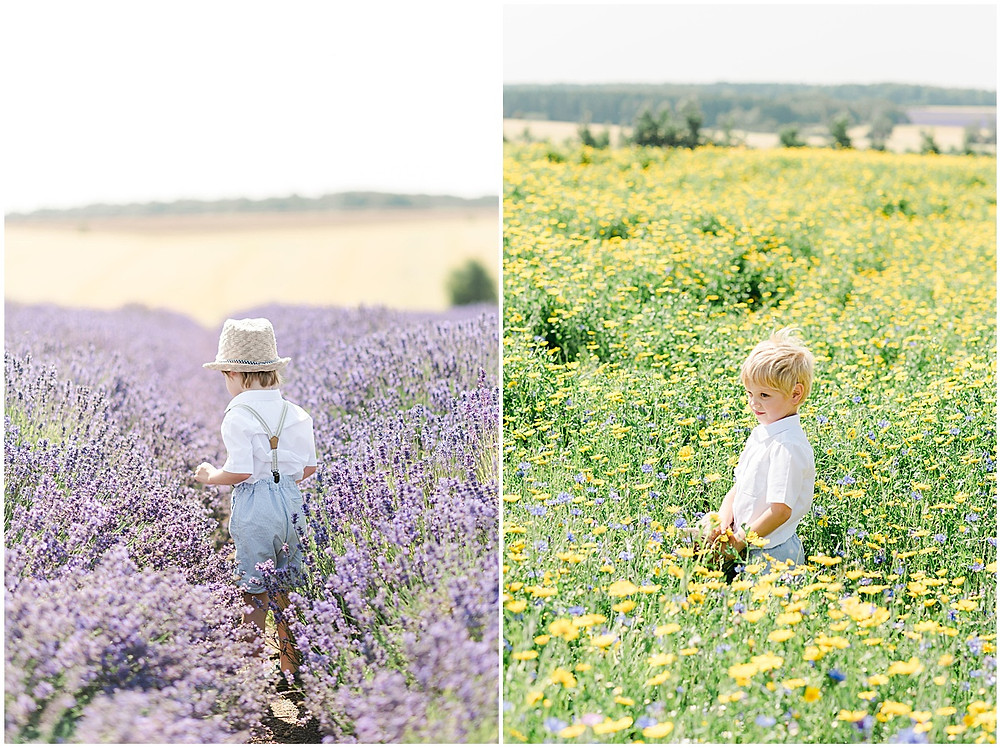 A family photo shoot at Cotswolds lavender with Cheltenham family photographer