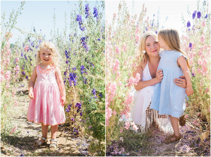 Confetti flower fields photo shoots children and their parents in a field of flowers grown for confetti
