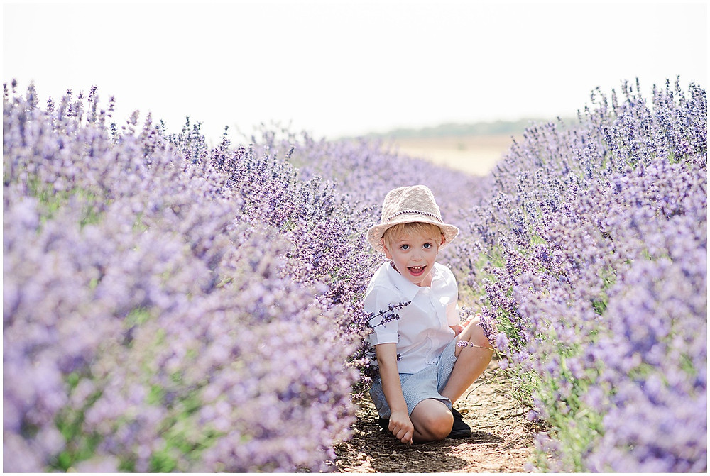 A family photo shoot at Cotswold Lavender with Cotswolds family photographer