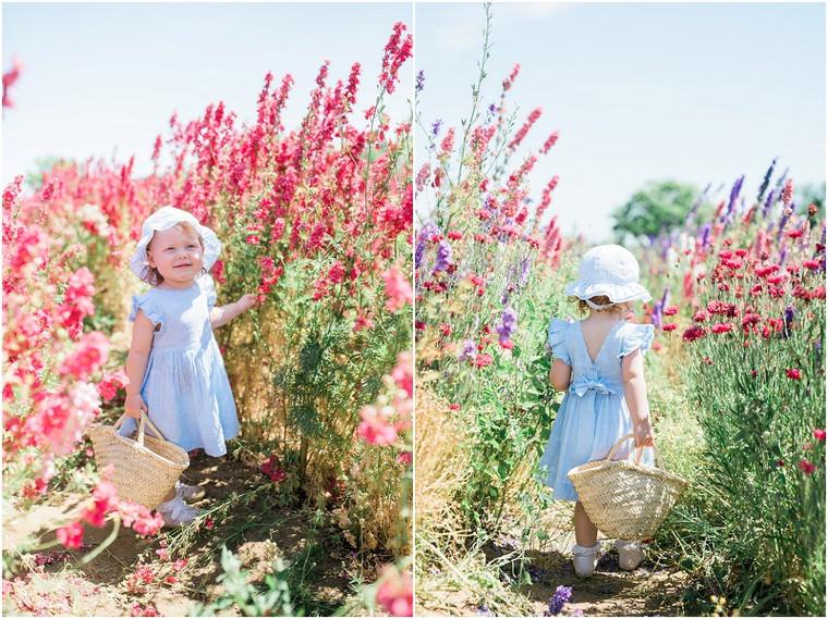 Confetti Flower Field mini shoots