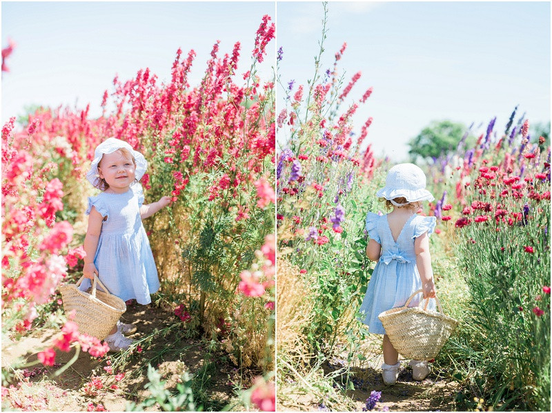 Confetti flower fields photo shoots young girl in a fields of flowers