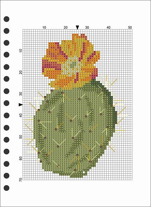 A5 Wooden Book - Cactus 2