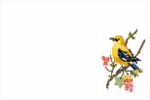 Bird 900 x 600