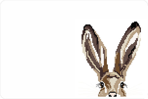Rabbit 900 x 600