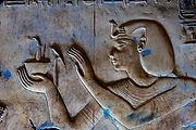 hieroglyphics-in-temple-of-seti-i.jpg