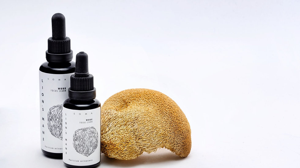 芬蘭KAAPA Lion's Mane Tincture猴頭菇萃取液