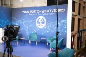 VEC2020 (1).jpg