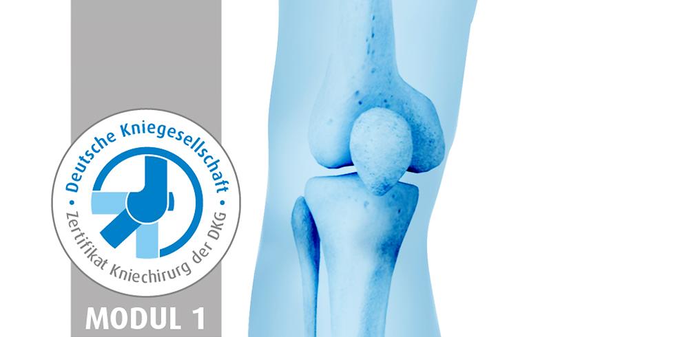 Specialist L5: Komplexe Ligamentrekonstruktionen am Kniegelenk | DKG Modulkurs Sportorthopädie