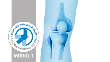 Knee-Prox. Tibia_Modul1.png