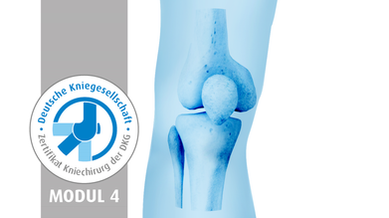 Knee-Prox. Tibia_Modul4.png