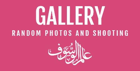 WassoufWorld Gallery BOX.png