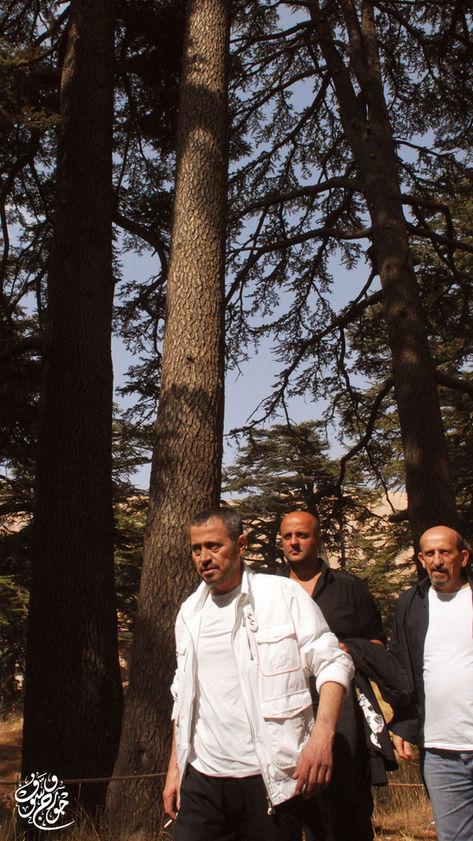 Allim Albi 2008 #16