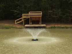 Fountain in main enclosure