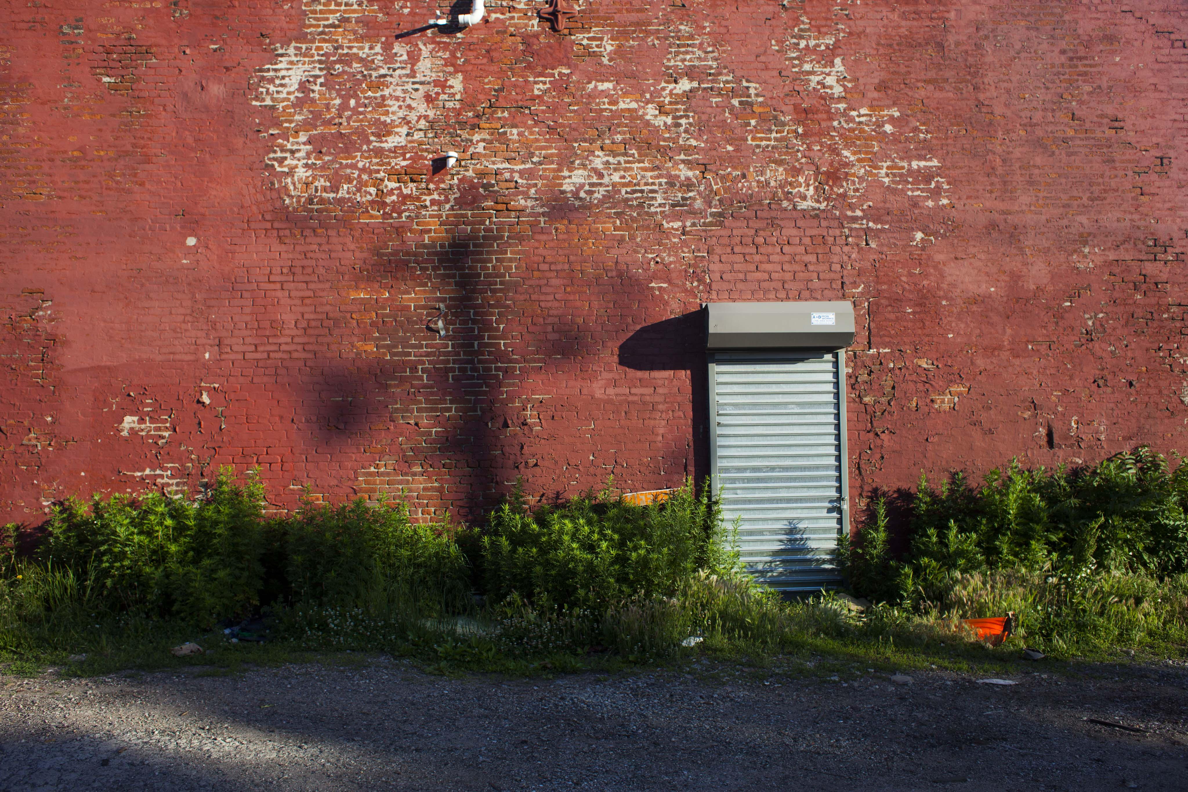 Red Hook_06