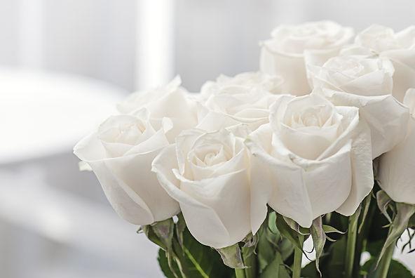 white roses close-up.jpg