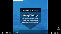 Word Meaning Wednesdy: Broughtupsy