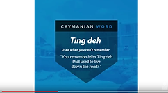 Word Meaning Wednesday: Ting Deh