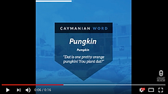 Word Meaning Wednesdy: Pungkin