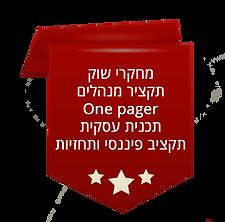 אלמנט דף 3.png
