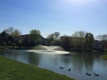 pond_fountain.jpg
