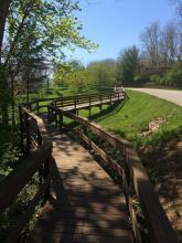wooden_walkway.jpg