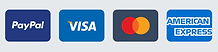 Credit Card Icons.png