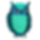Night Owl Websites Logo
