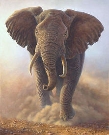 Dust Kicking Bull Elephant_edited.jpg
