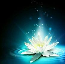 White Lotus in Blue Water Ripple.jpg