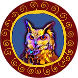 Night Owl Websites Logo