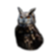 Owl Head for Logo.png