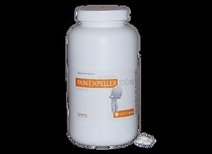 Pain Expeller 1000's website.png