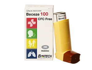 Beceze 100 website.png
