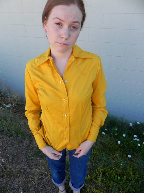 1960's Panhandle Slim Western Dress Shirt